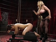 Majuscule tits lint whips tied apropos brunette